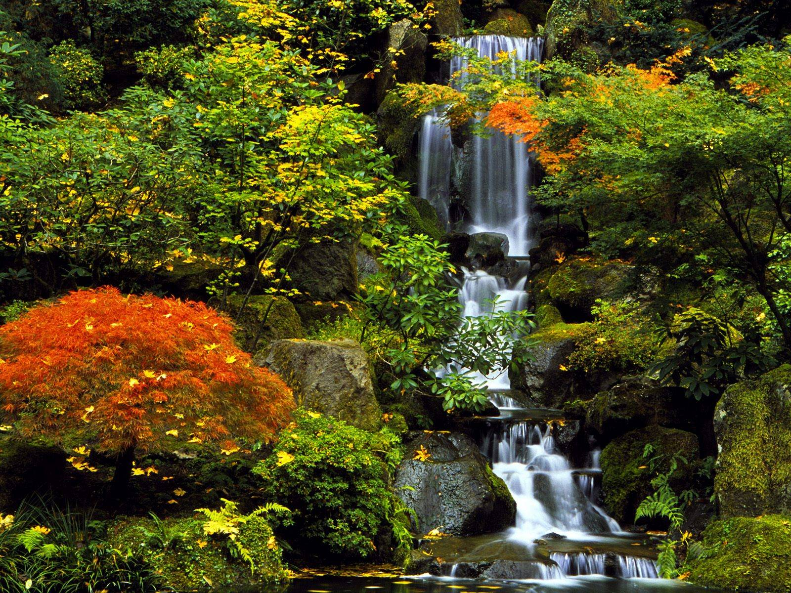 http://grandcanyon.free.fr/images/cascade/original/Japanese%20Garden,%20Portland,%20Oregon.jpg