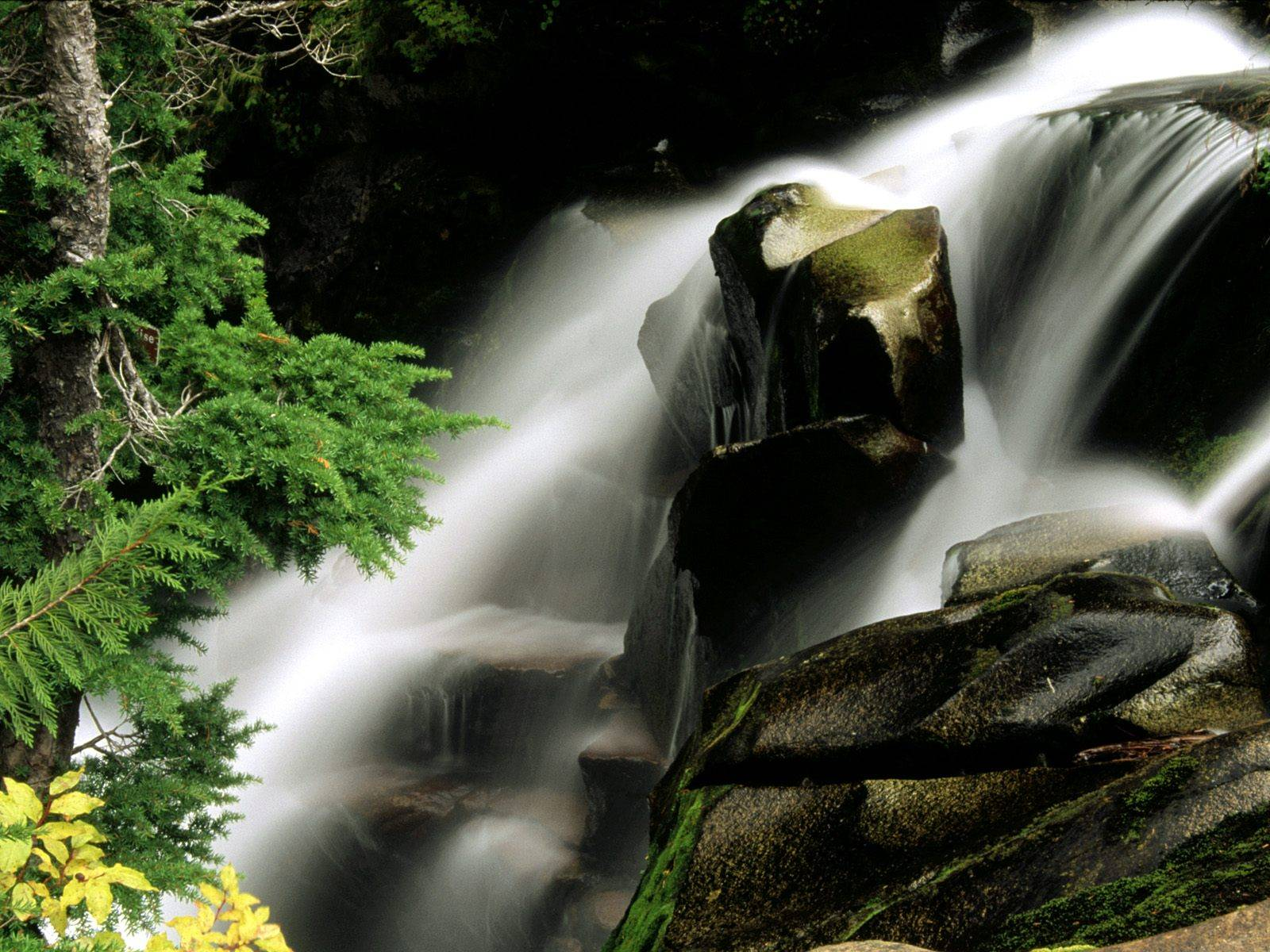 http://grandcanyon.free.fr/images/cascade/original/Paradise%20River%20Waterfall,%20Washington.jpg