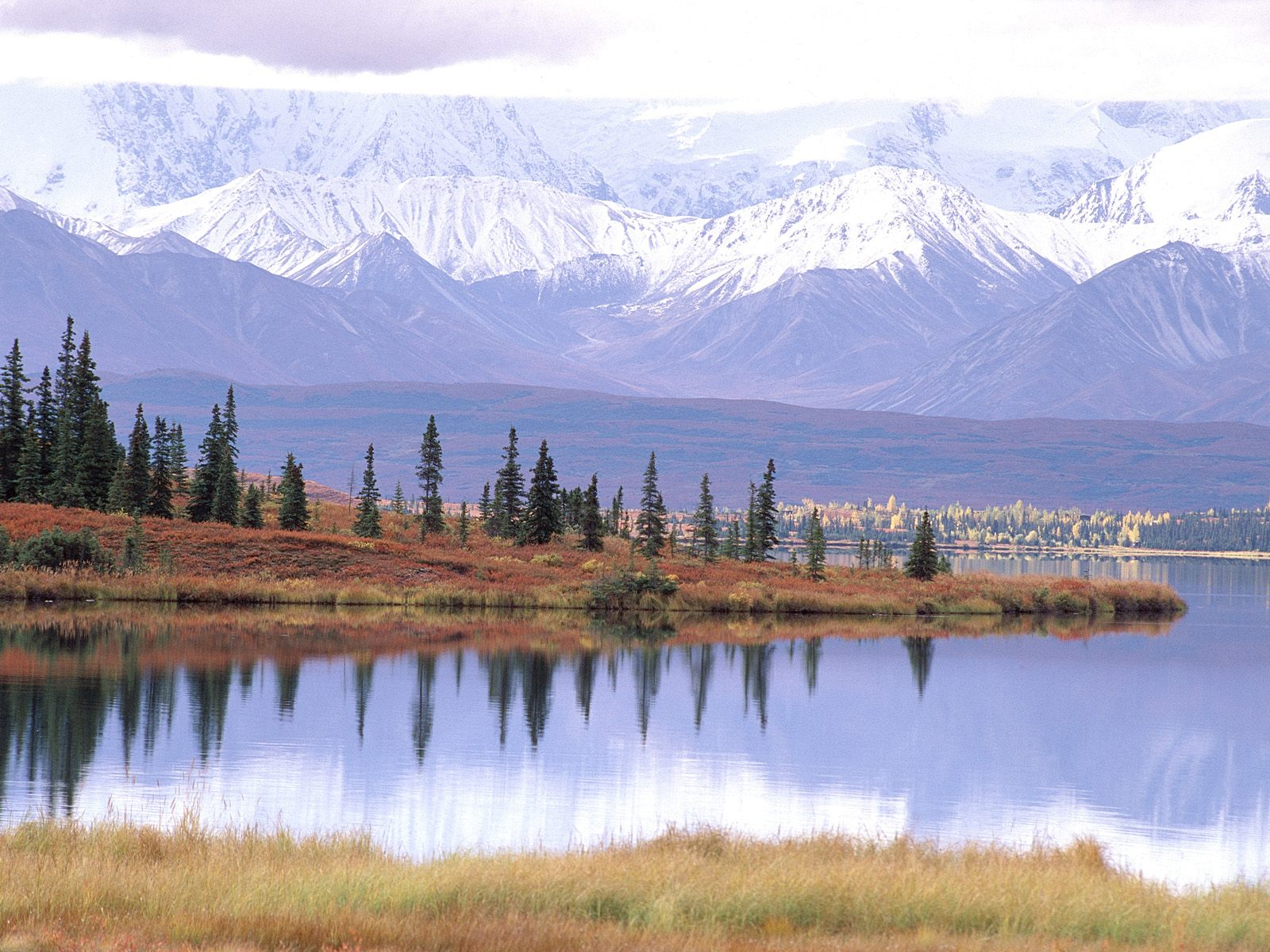 Les Lacs - Mount Tundra and Wonder Lake, Denali National Park, Alaska ...