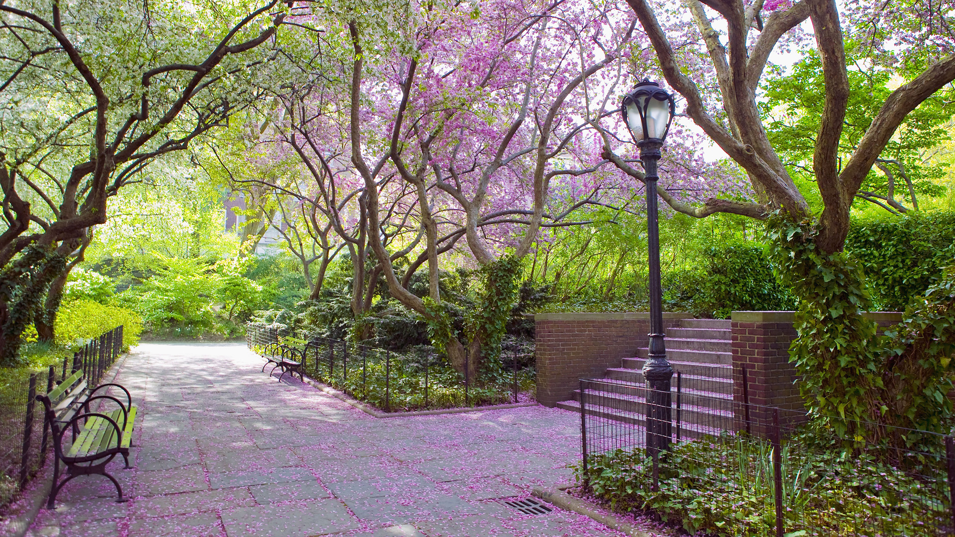 New York: Spring : point_of_no_23